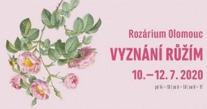 Olomouc - pamiatky a ruže