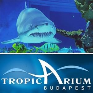 Budapešť - Tropicarium a Oceanarium-13